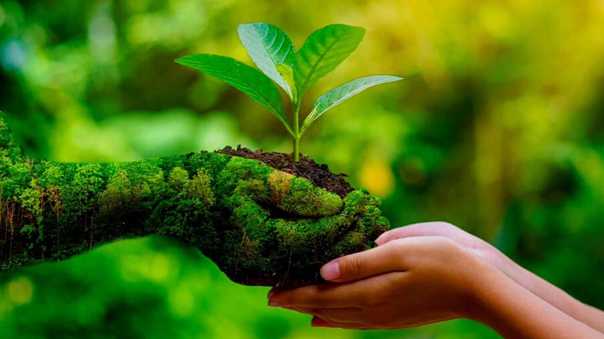 Make This World For Tomorrow. Green World!